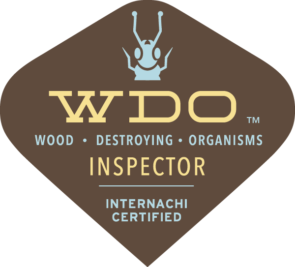WDI Termite Inspection Knoxville