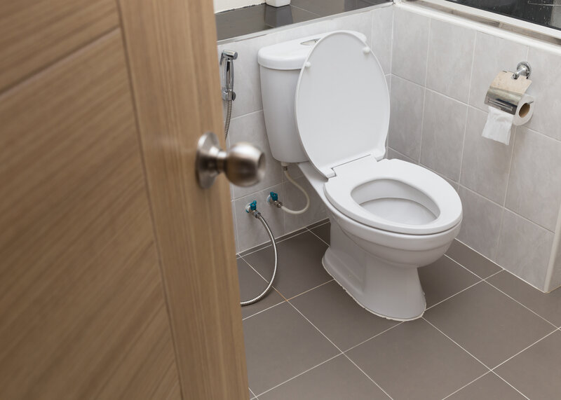Toilet Inspection Knoxville